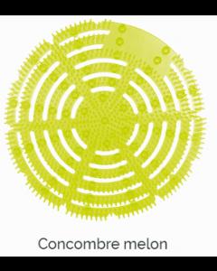Prodiscreen écran urinoir surpuissant antisplash, Concombre-Melon, lot de 10